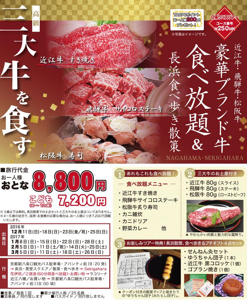 肉ツアーチラシ