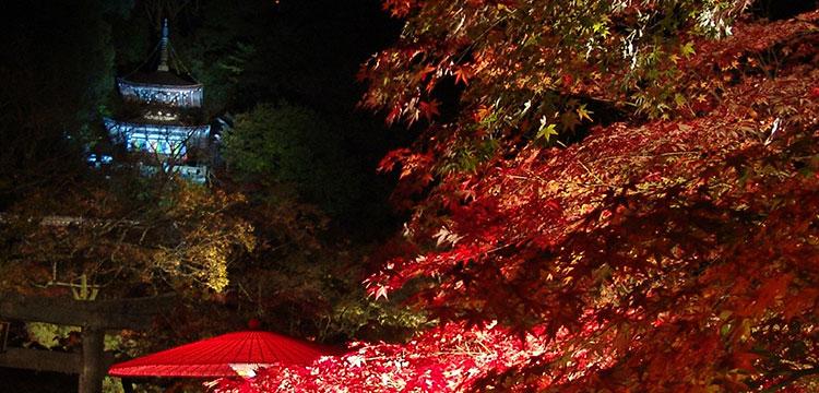 紅葉・東山コース イメージ
